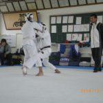 IMGP4357